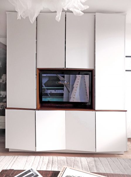 A media cabinet with lots of extra storage